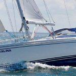 sailingforyou